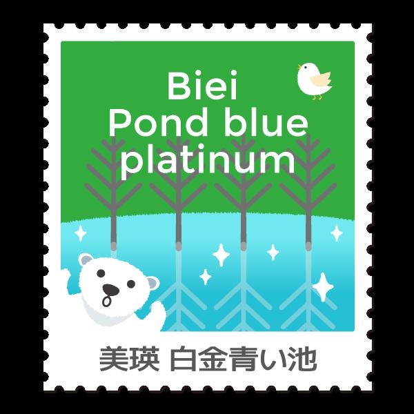 Biei Pound bleu Platinum